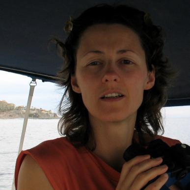 On board Boadicea, off Cabo san Lucas, 2015